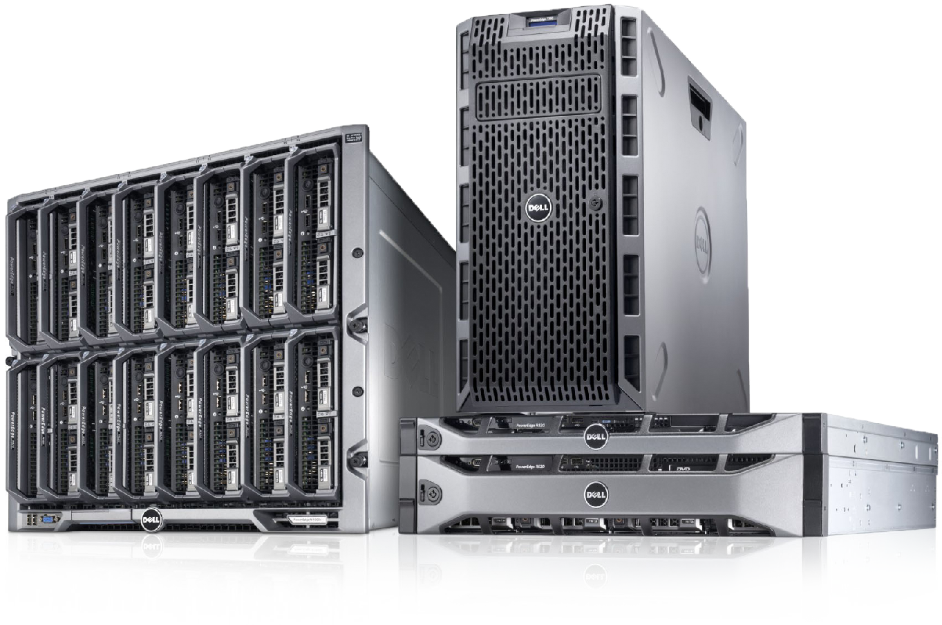 servizi IT web media